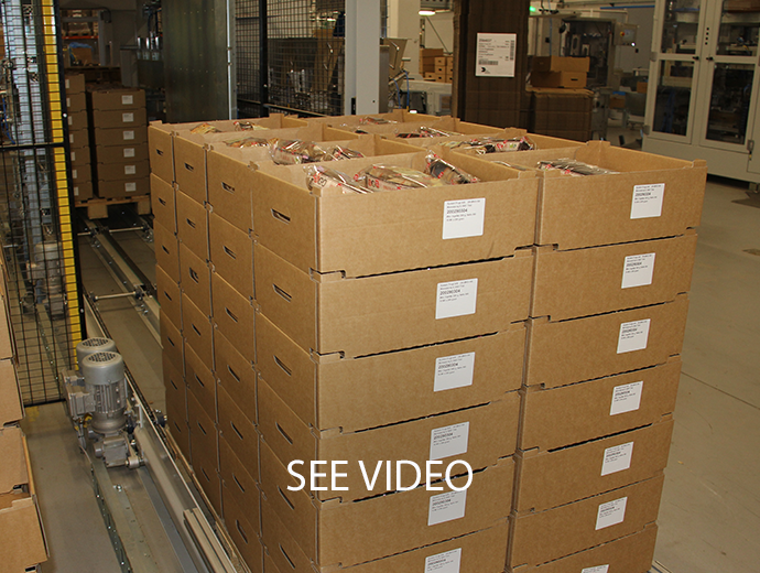 Packaging and palletizing of fruits and vegetables